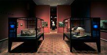 HLMD |Archaeologie 1